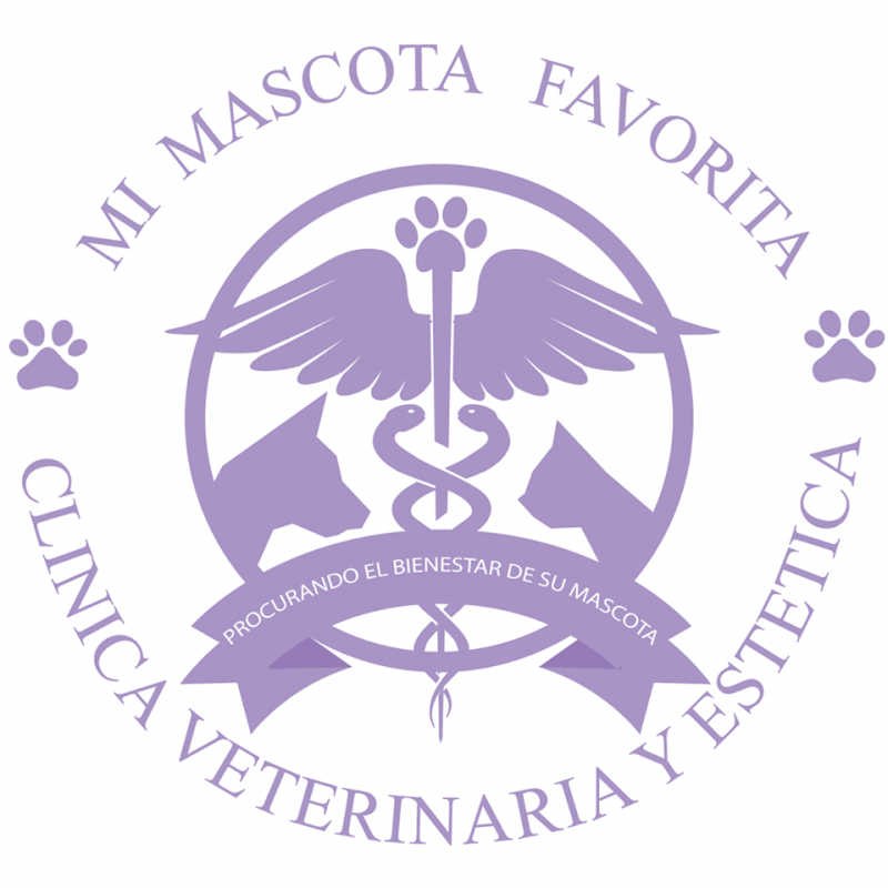 MI Mascota Favorita Veterinaria