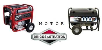 Motor Briggs Stratton