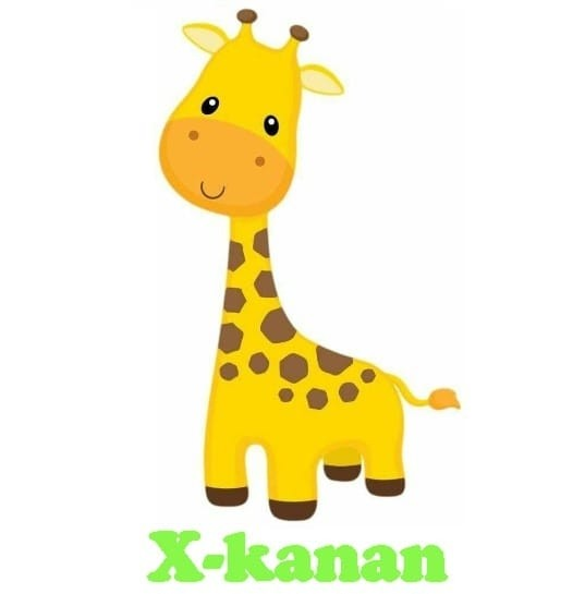 "Centro Infantil ""X-Kanan"""