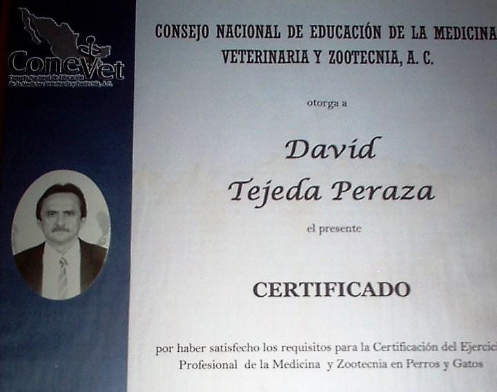 """Consultorio Veterinario """"TEJEDA"""""""