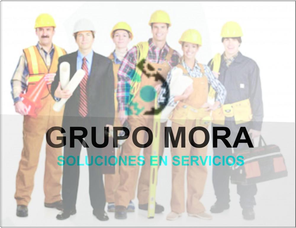 Grupo Mora