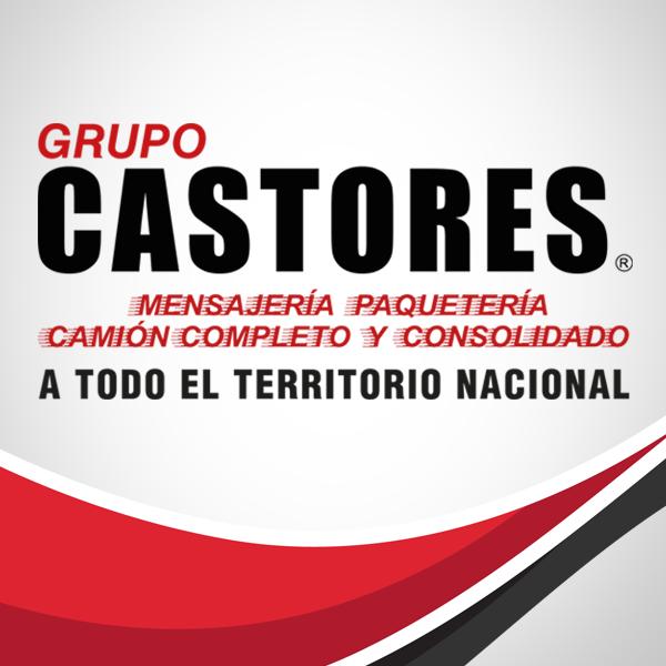 Grupo Castores