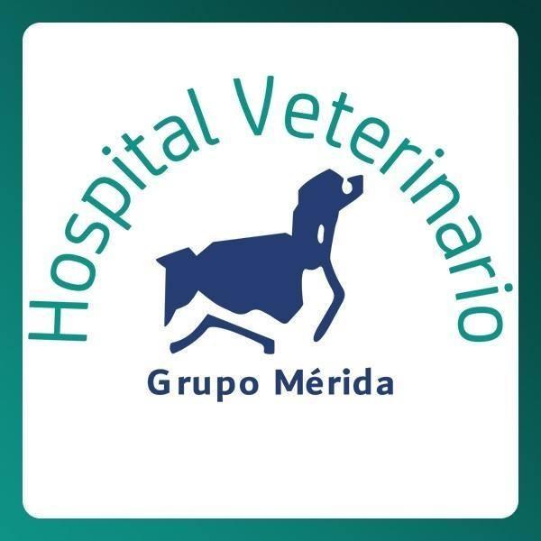 Veterinaria Grupo Mérida