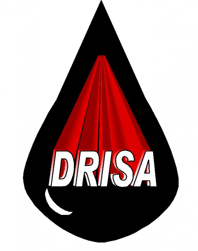 DRISA Distribuidora Regional Industrial SA de CV